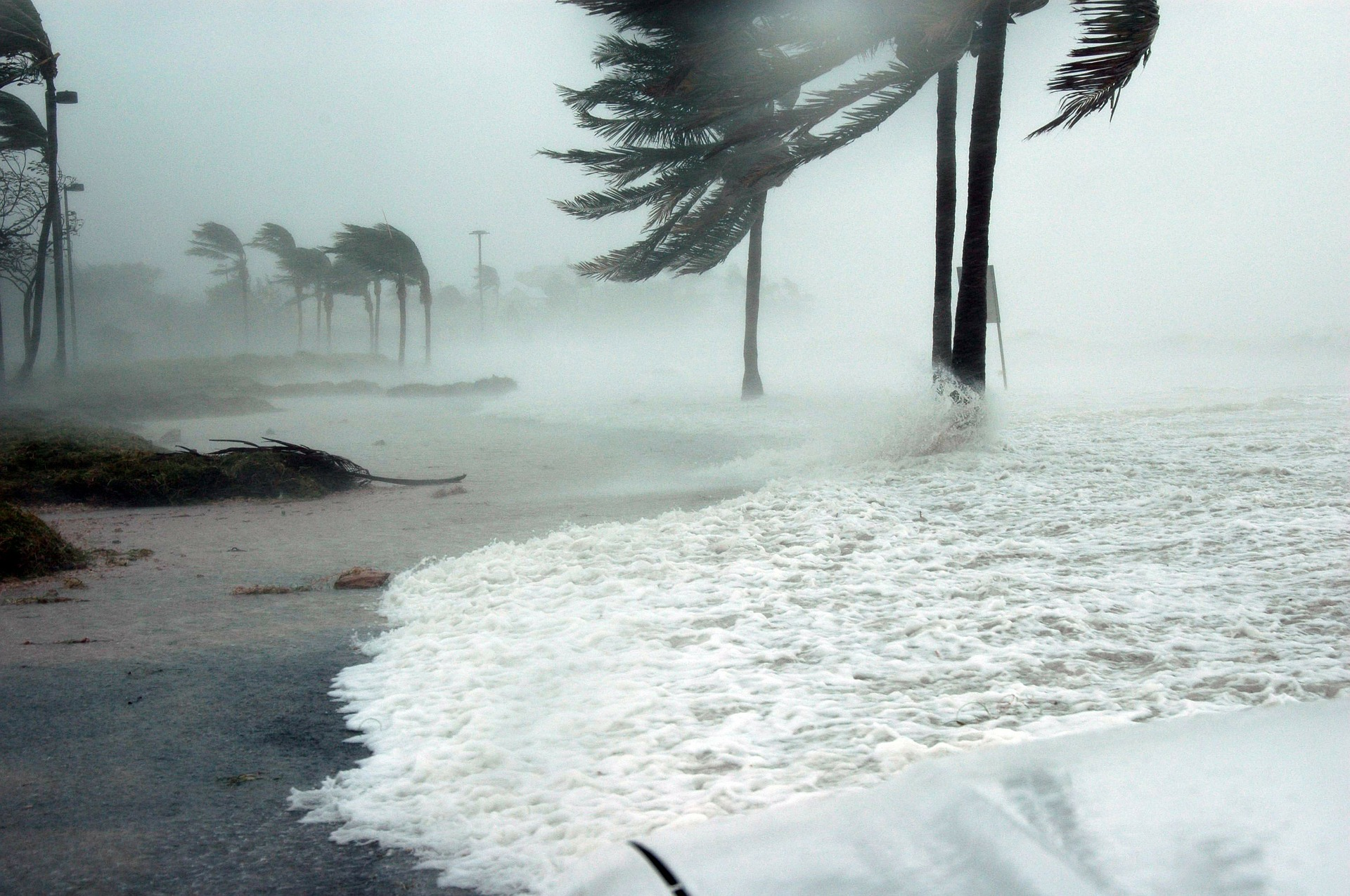 Survive the Storm with Florida Wind Insurance